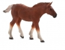 Źrebię rasy Suffolk Punch ANIMAL PLANET (87196)