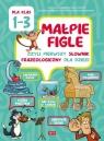 Małpie figle czyli pierwszy słownik frazeologiczny dla dzieci dla klas 1-3 Willman Anna