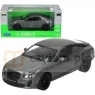 WELLY Bentley Continental Supersports s. (WE24018)