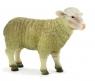 ANIMAL P. Owca (F7096)