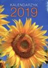 Kalendarz 2020 Kieszonkowy mix wzorów