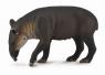 Tapir Bairda L (88596)