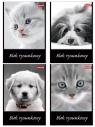 Blok rysunkowy Dan-Mark A4/20 biały Cat&Dog (1068)