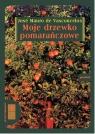 Moje drzewko pomarańczowe  (Audiobook)  Vasconcelos Jose Mauro