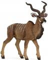 Antylopa kudu wielka