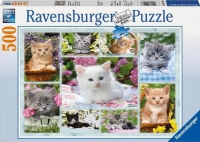 Puzzle 500 Kotki w koszykach (141968) RAP141968
