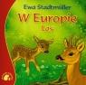 Zwierzaki-Dzieciaki W Europie Las