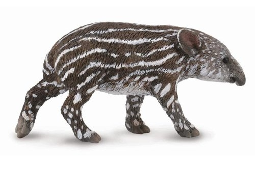 Tapir cielę bairda