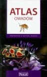 Atlas owadów Przydatny z natury rzeczy Przybyłowicz Łukasz