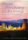 Węgiel i alternatywne źródła energiiPrognozy na przyszłość Taubman Jerzy
