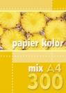 Papier kolorowy A4 300k. mix kolorów