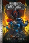 World of Warcraft: Vol`jin: Cienie hordy Michael A. Stackpole