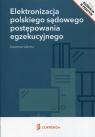 Elektronizacja polskiego sądowego postępowania egzekucyjnego
