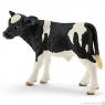 Cielę rasy Holstein - 13798