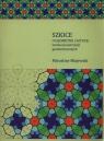 Szkice o geometrii i sztuce: sztuka konstrukcji geometrycznych