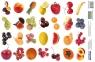 Naklejki Owoce