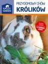 Przydomowy chów królików Stern Alice