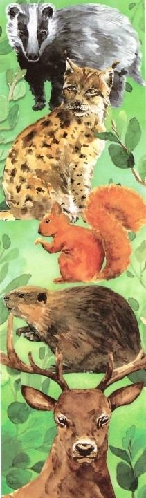 Zakładka - Zwierzęta
