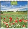 Kalendarz 2019 13 Planszowy Polskie Krajobrazy