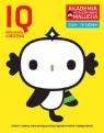 IQ-Inteligencja logiczna Akademia Inteligentnego Malucha dla 4-5 latków