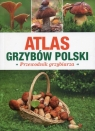 Atlas grzybów Polski Przewodnik grzybiarza
