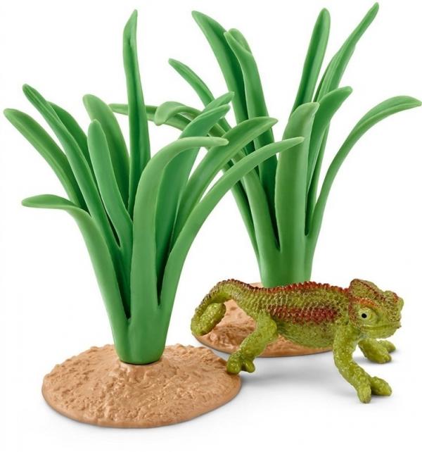 Kameleon w trzcinach - 42324