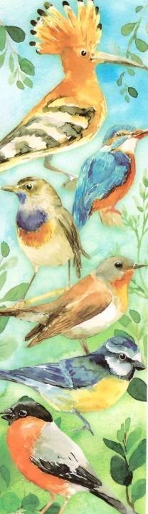 Zakładka - Ptaki