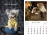 Kalendarz 2021 - Ach, te zwierzaki 13
