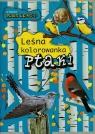 Ptaki. Leśna kolorowanka