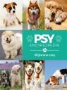 Encyklopedia. Psy - wybrane rasy